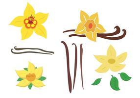 Vanilla bean clipart vector clipart Vanilla Free Vector Art - (3,428 Free Downloads) clipart