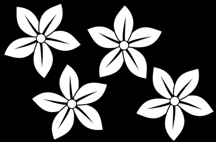 Vanilla flower clipart transparent DIY Design pictures clip art Downloads ~ hatenylo.com transparent