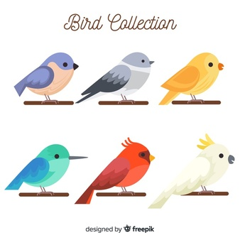 Vector birds clipart image freeuse Bird Vectors, Photos and PSD files | Free Download image freeuse