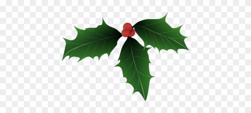 Vector clipart christmas holly jpg royalty free download Christmas Cards - Christmas Holly Vector Art Free - Free ... jpg royalty free download