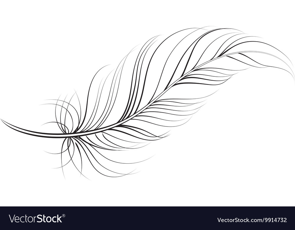 Vector clipart feather free clipart free Clip art feather clipart free