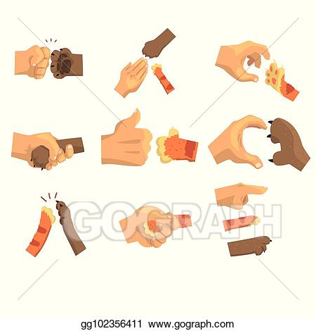 Vector clipart set animals banner freeuse stock Vector Clipart - Hand of a man holding animals paw set ... banner freeuse stock