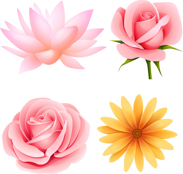 Vector flowers free picture library stock Vector / Free Vectors Download / 4Vector picture library stock