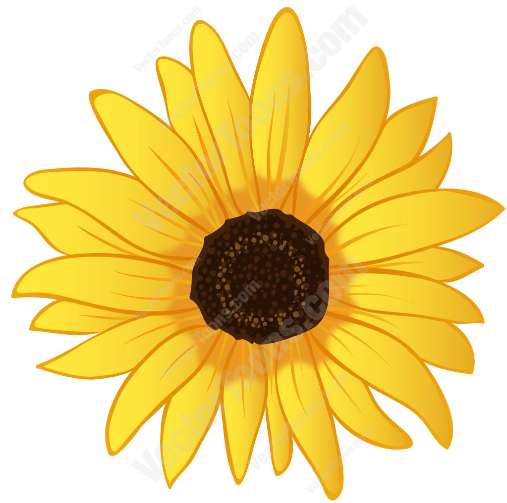 Vector graphics sunflower clipart jpg transparent library Free Sunflower Graphics, Download Free Clip Art, Free Clip ... jpg transparent library