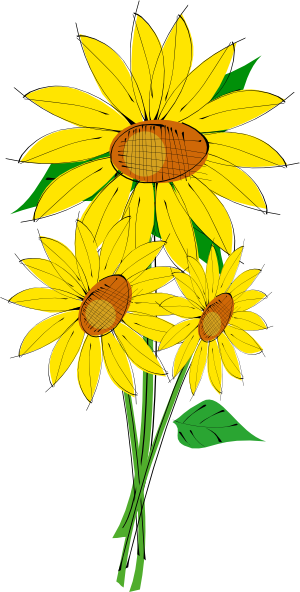 Vector graphics sunflower clipart image transparent stock Sunflowers clip art (114888) Free SVG Download / 4 Vector image transparent stock