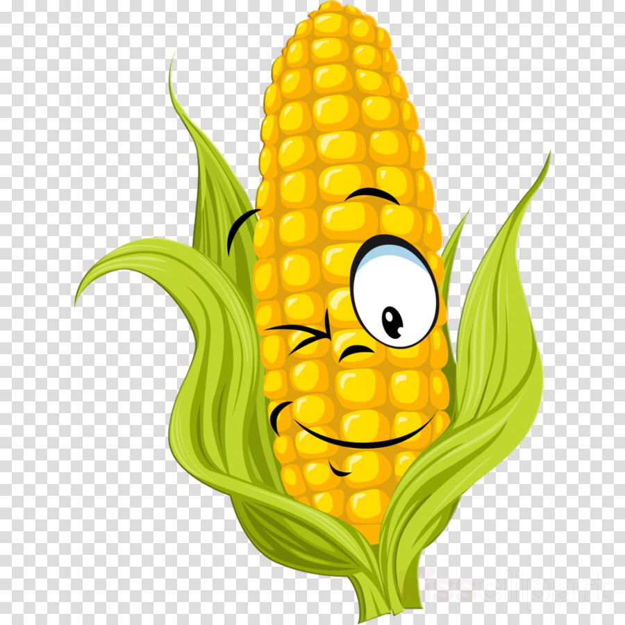 Vegetable field clipart clipart freeuse library Flower Field clipart - Corn, Drawing, Vegetable, transparent ... clipart freeuse library
