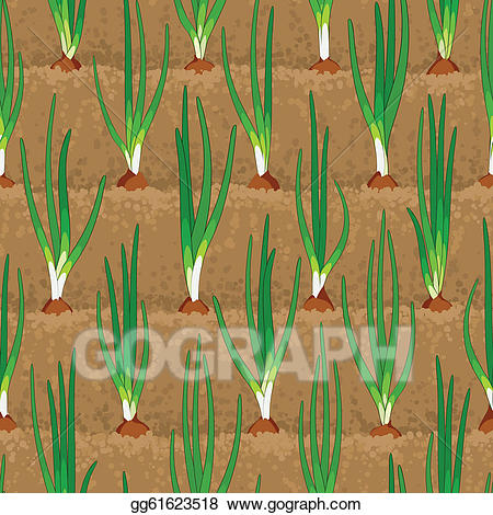 Vegetable field clipart vector picture freeuse download Vector Clipart - Onion sprout vegetable patches in row ... picture freeuse download