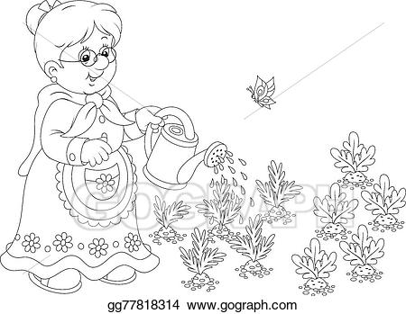Vegetable garden clipart black and white royalty free library Vector Stock - Granny watering vegetables. Clipart ... royalty free library