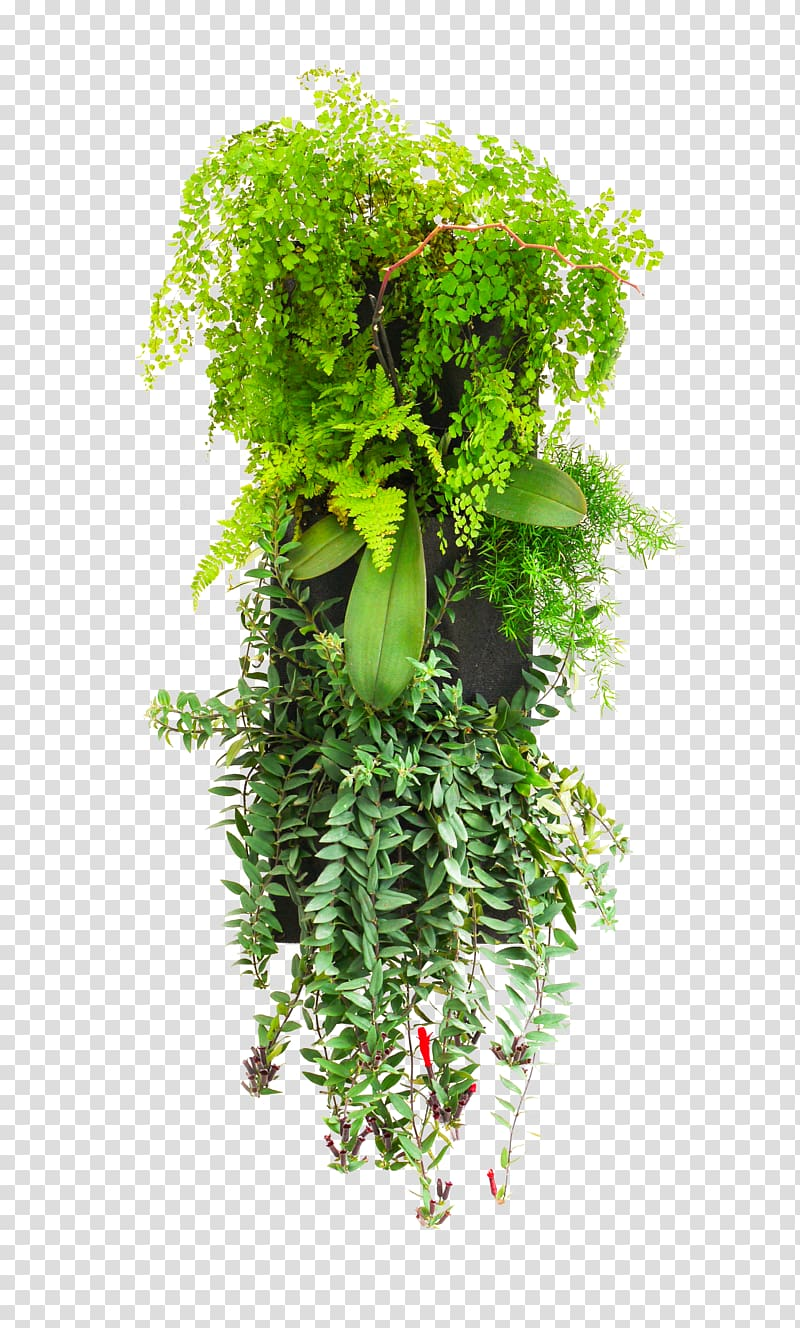 Vertical garden clipart royalty free stock Green wall Garden Flowerpot Window Blinds & Shades, kitchen ... royalty free stock