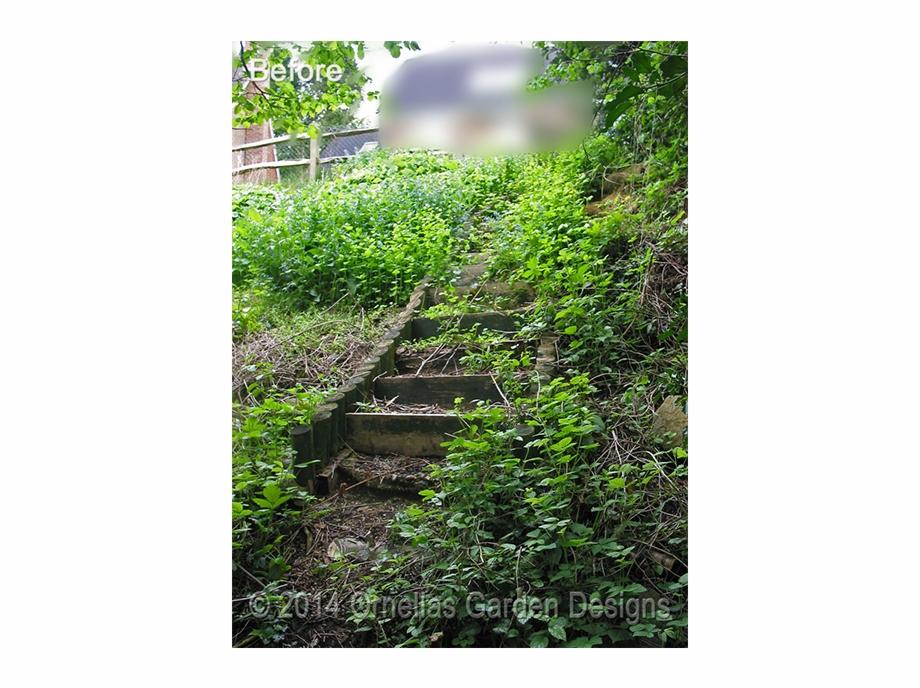 Vertical garden clipart clipart transparent stock Vertical Garden Sevenoaks - Thuya Free PNG Images & Clipart ... clipart transparent stock