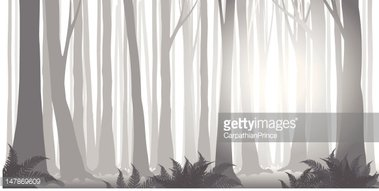 Verticle nature grayscale clipart graphic library download Forest IN Fog, Grayscale stock vectors - Clipart.me graphic library download
