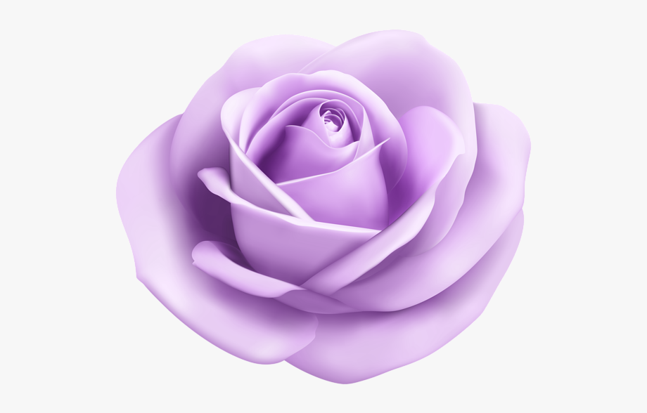Very small vines of roses clipart lavender clip art royalty free library Lavender Rose Png - Light Purple Flower Png #2313693 - Free ... clip art royalty free library