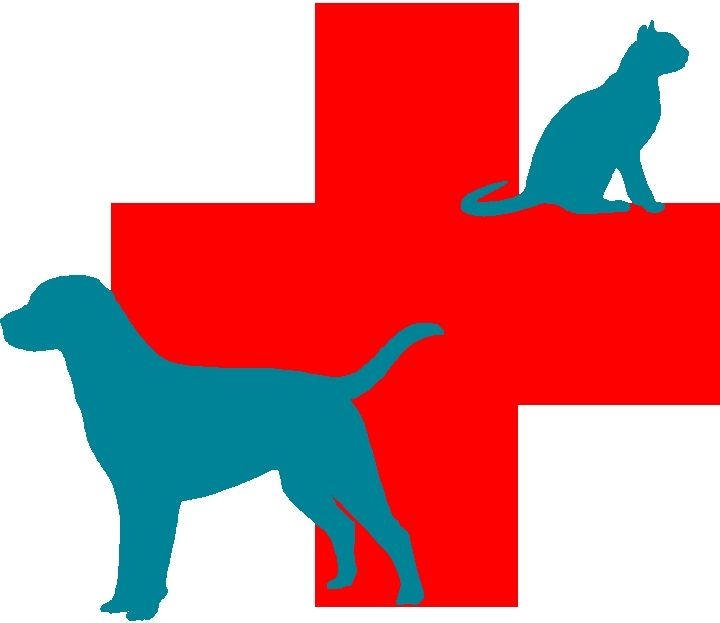 Vet symbol clipart png freeuse download Free Veterinary Symbol Cliparts, Download Free Clip Art ... png freeuse download