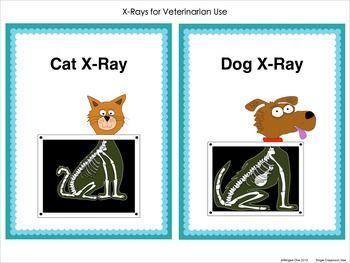 Vet x-ray machine clipart vector freeuse download Pet Vet Center Dramatic Play   Kindergarten Kolleagues ... vector freeuse download