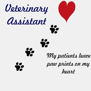 Veterinarian assiastanyny rg clipart clipart stock Veterinary Assistant Clothing | Zazzle clipart stock