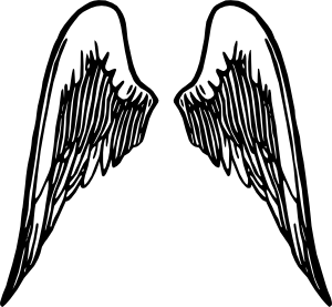Victoria secret wings clipart clip art black and white This reminds me of Victoria\'s Secret pink because they have ... clip art black and white