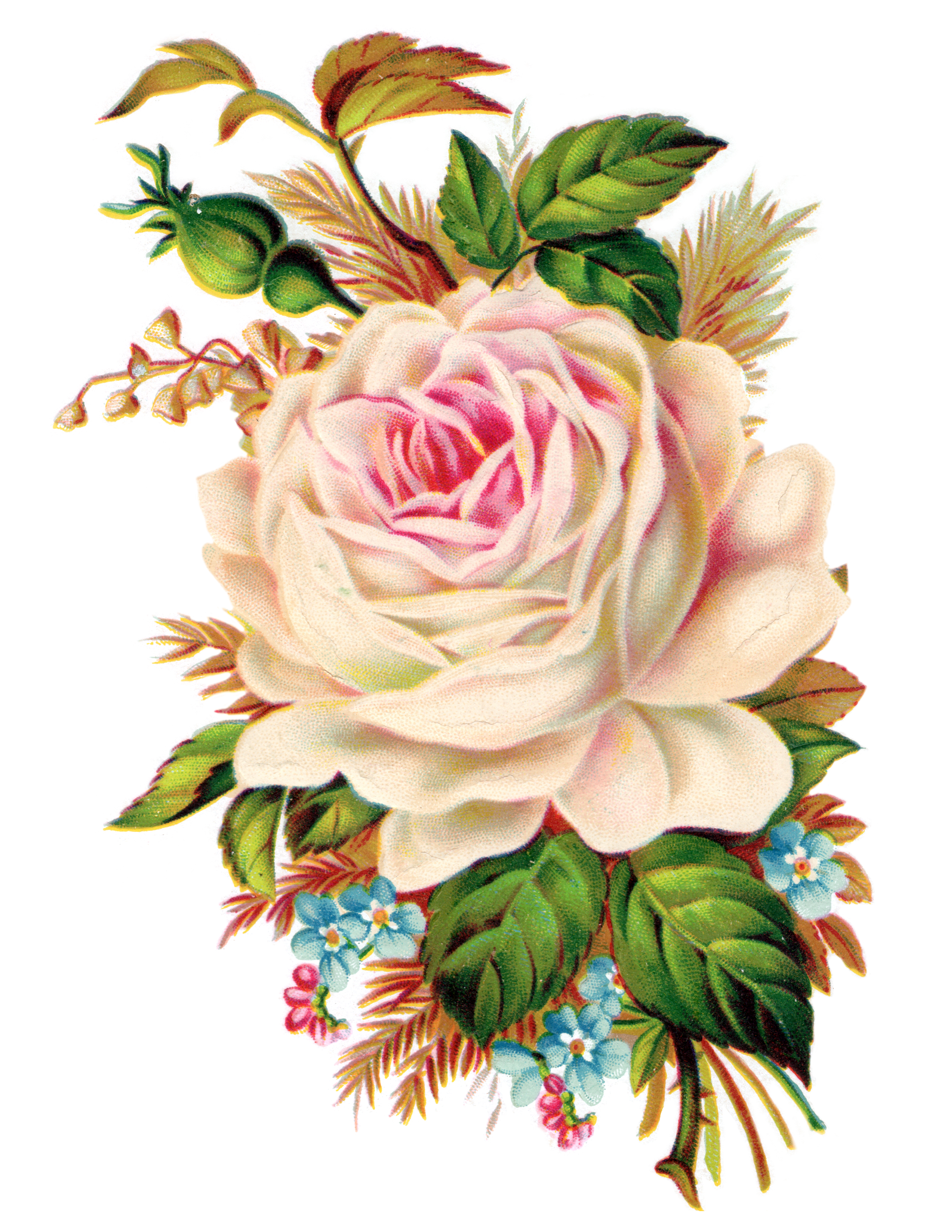 Victorian clipart crank picture black and white Clip Art: Royalty Free Gorgeous Vintage Rose Image - Free ... picture black and white
