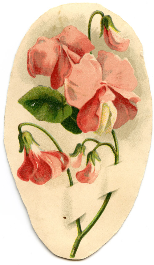 Victorian floral images image royalty free library Free victorian clipart images - Royalty Free clip art images image royalty free library