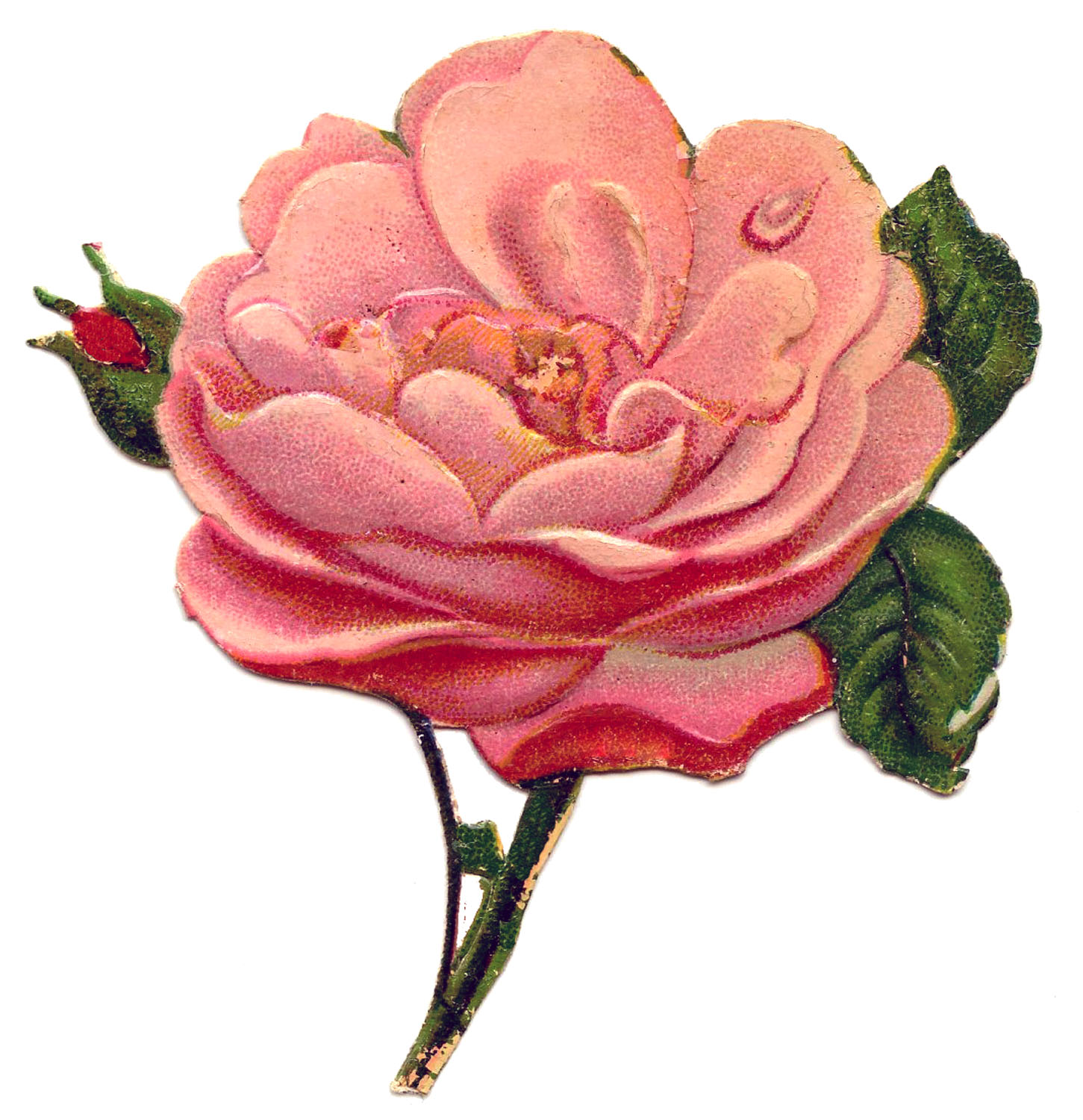 Victorian rose clipart clip art library library Free Victorian Rose Pictures, Download Free Clip Art, Free ... clip art library library