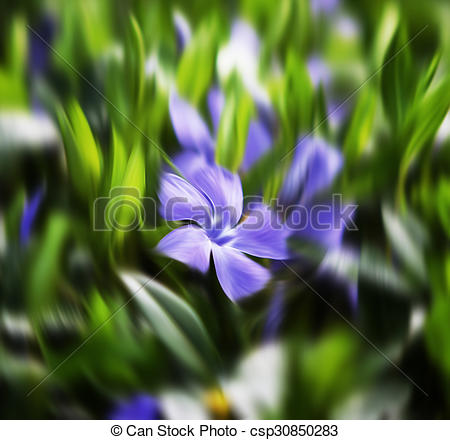 Vinca minor clipart png royalty free Pictures of flower vinca minor - Abstract blurred flowers ... png royalty free