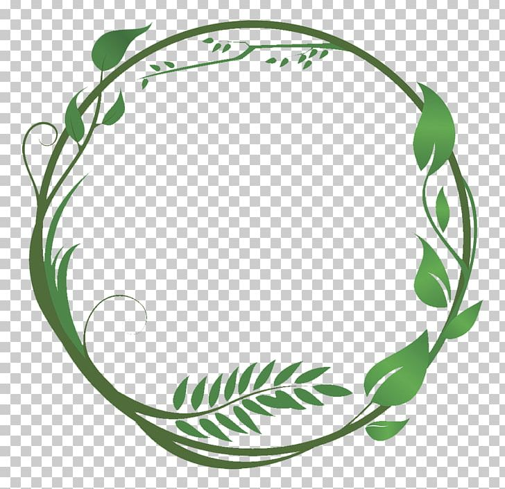 Vine in circle clipart svg free Common Ivy Leaf Green Vine PNG, Clipart, Around, Branches ... svg free