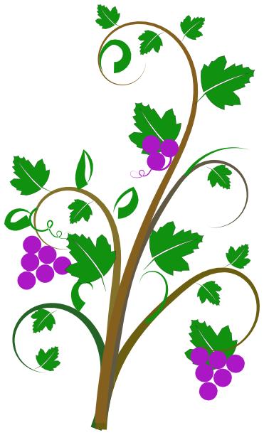 Vine clipart images banner transparent stock Free Vine Cliparts, Download Free Clip Art, Free Clip Art on ... banner transparent stock