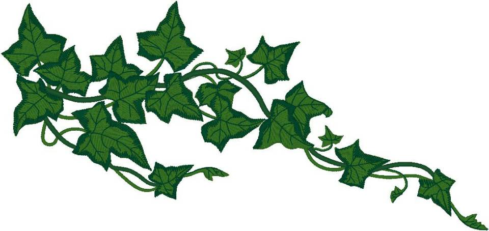 Vine clipart images clip art stock Vines Clipart | Free download best Vines Clipart on ... clip art stock