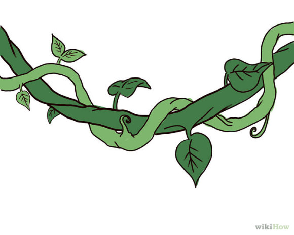 Vine clipart images vector library download Free Vine Cliparts, Download Free Clip Art, Free Clip Art on ... vector library download