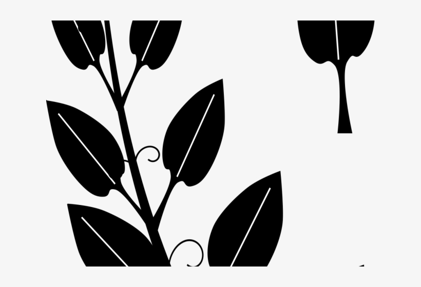 Vine clipart silhouette transparent clip art royalty free download Vines Clipart Vine Leaves - Black And White Silhouette Vine ... clip art royalty free download