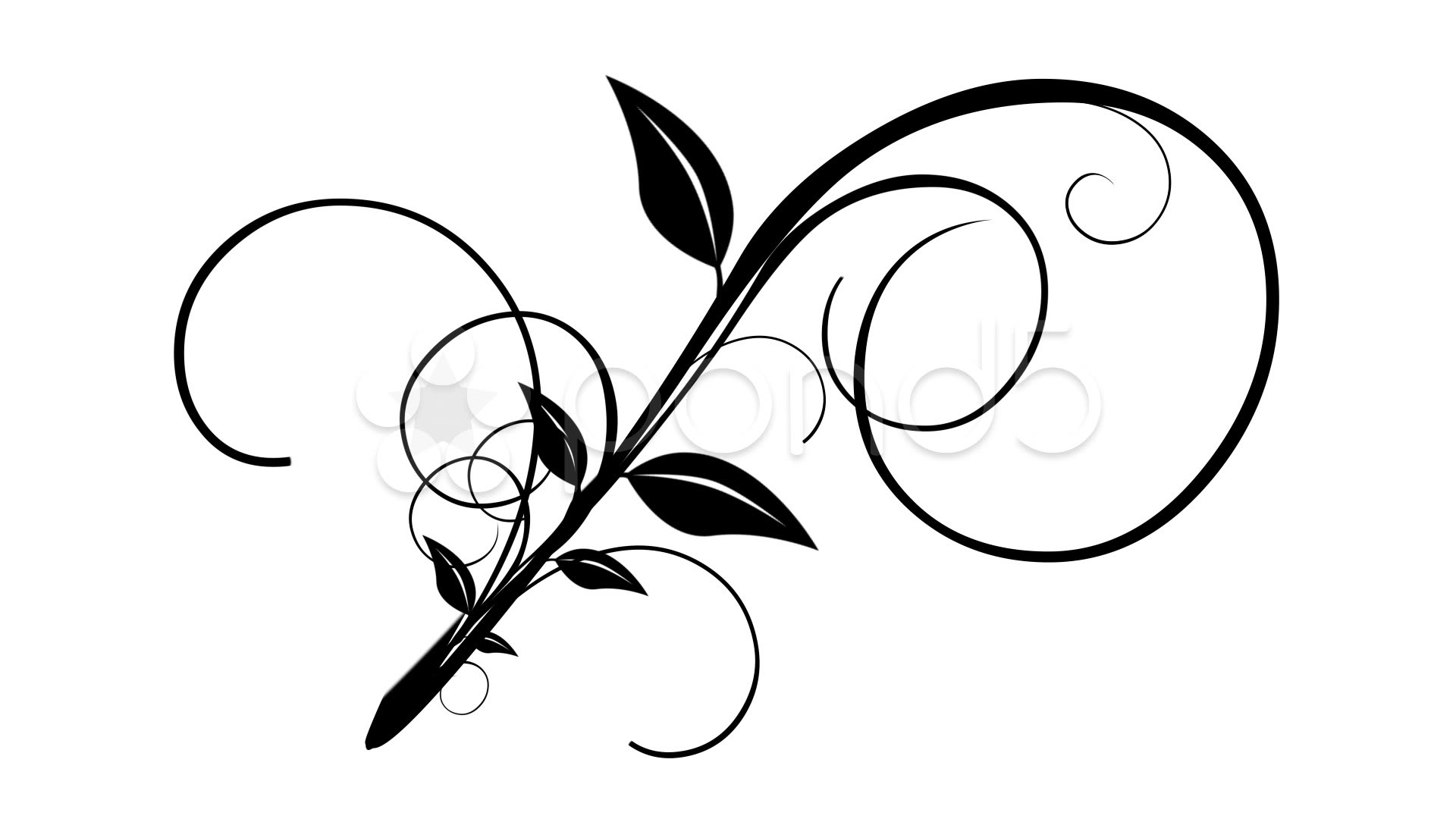 Vine flourish clipart graphic library library Collection of Flourish clipart | Free download best Flourish ... graphic library library