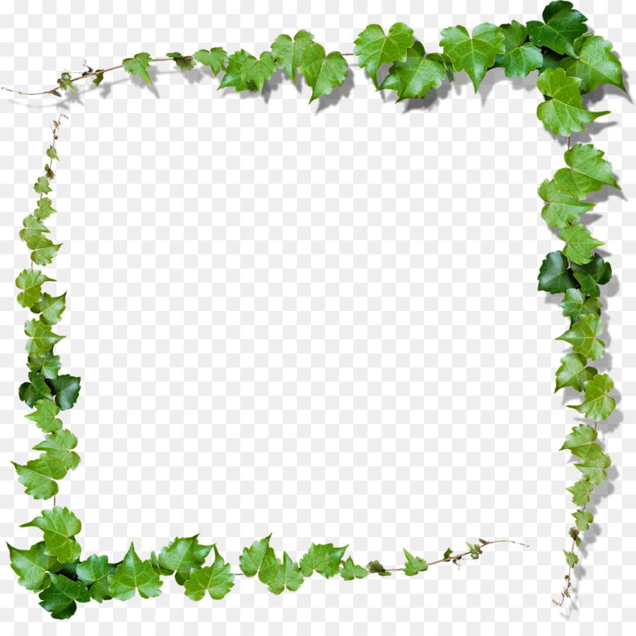Vine frame clipart clipart library library Floral Border Frame clipart - Vine, Leaf, Green, transparent ... clipart library library