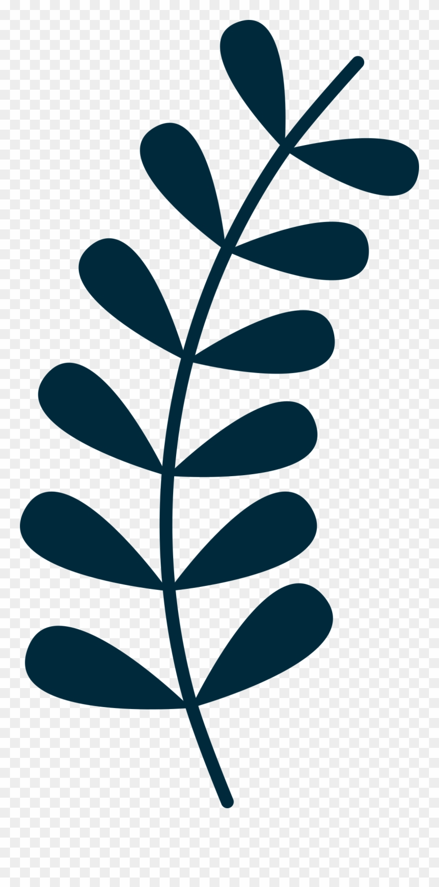 Vine images clipart stock Simple Clipart Vine - Leaves On Vine Clipart - Png Download ... stock