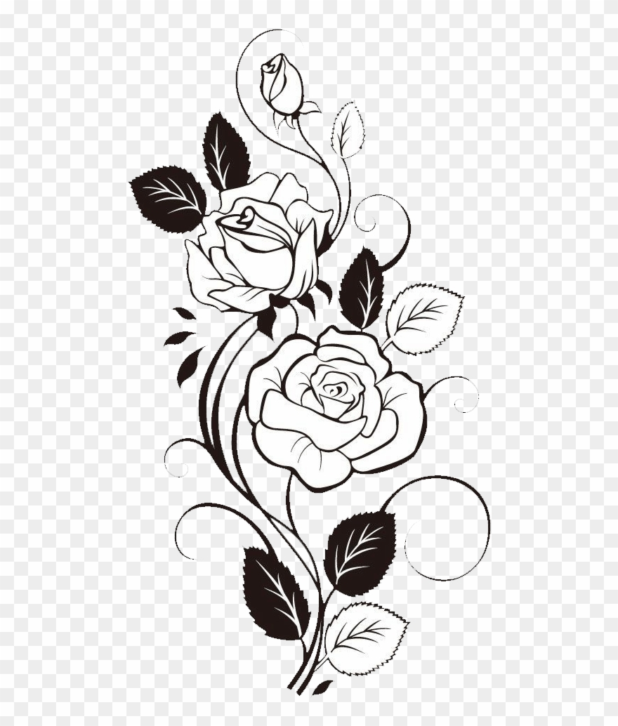 Vine sketch clipart vector Sunflower Clipart Black And White - Rose With Vines Drawing ... vector