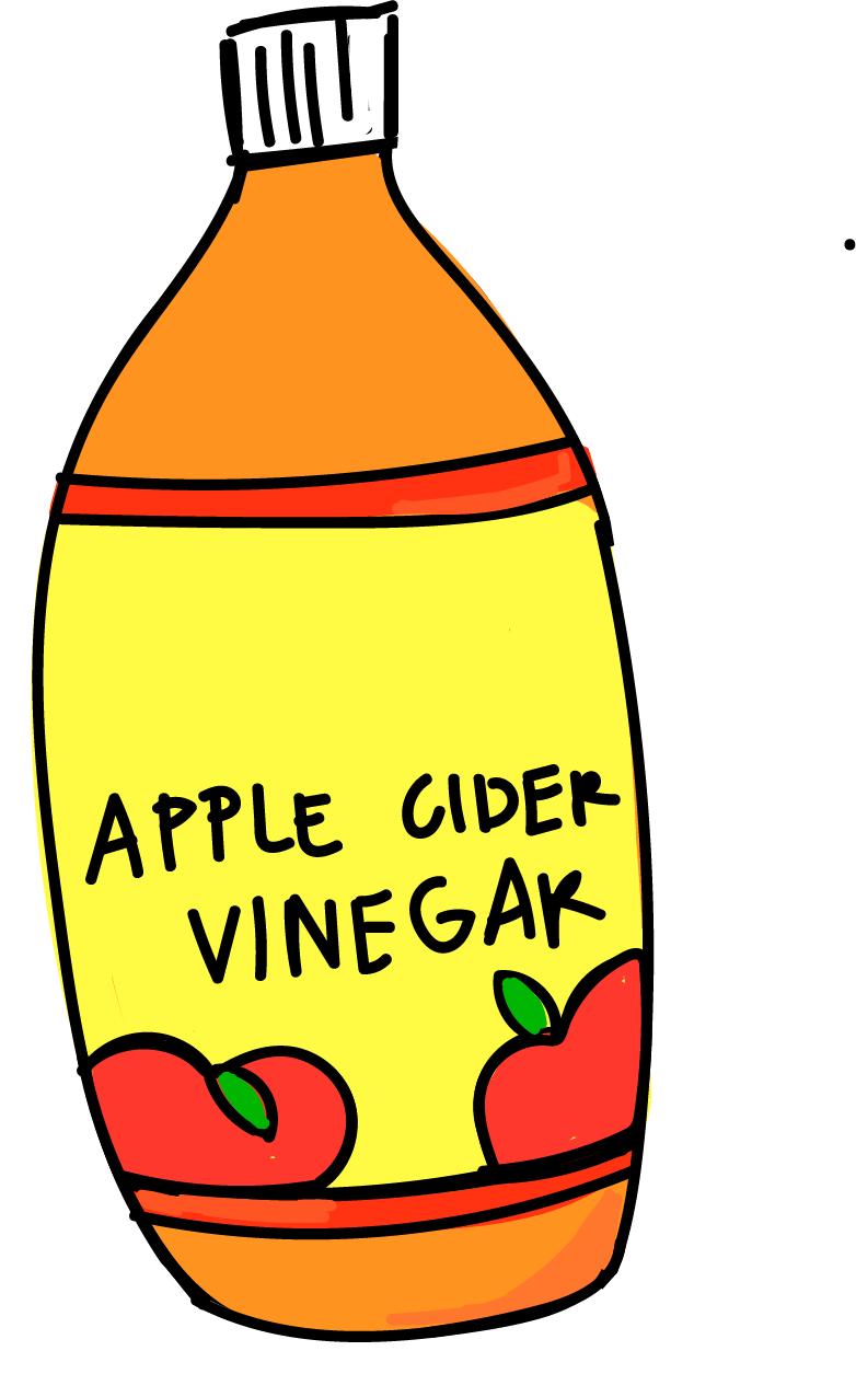 Vinigar clipart vector free download Apple Cider Clipart   Free download best Apple Cider Clipart ... vector free download