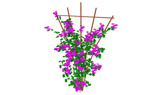 Vining flowers clipart png transparent download Bougainvillea High Poly Plant Trellis | 3D Warehouse png transparent download