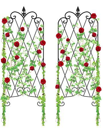 Vining flowers clipart svg free Amazon.com: Trellises - Plant Support Structures: Patio ... svg free