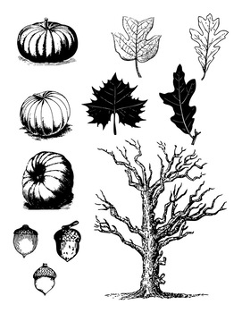 Vintage autum clipart free stock Vintage Fall Clipart, Autumn Clipart, Pumpkin, Fall Leaves, Forest,  Halloween free stock