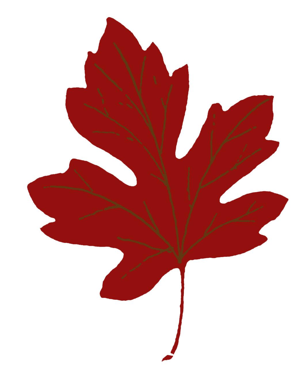 Vintage autum clipart clip Vintage Fall Clip Art - Maple Leaves - The Graphics Fairy clip