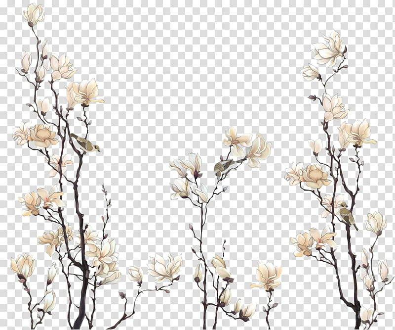 Vintage bloom clipart clip black and white Flores vintage, white magnolia flowers in bloom transparent ... clip black and white