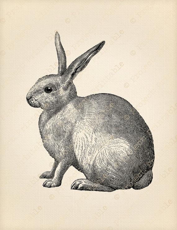 Vintage bunny clipart transparent stock Printable Digital Graphics - Vintage Bunny RABBIT Fabric ... transparent stock