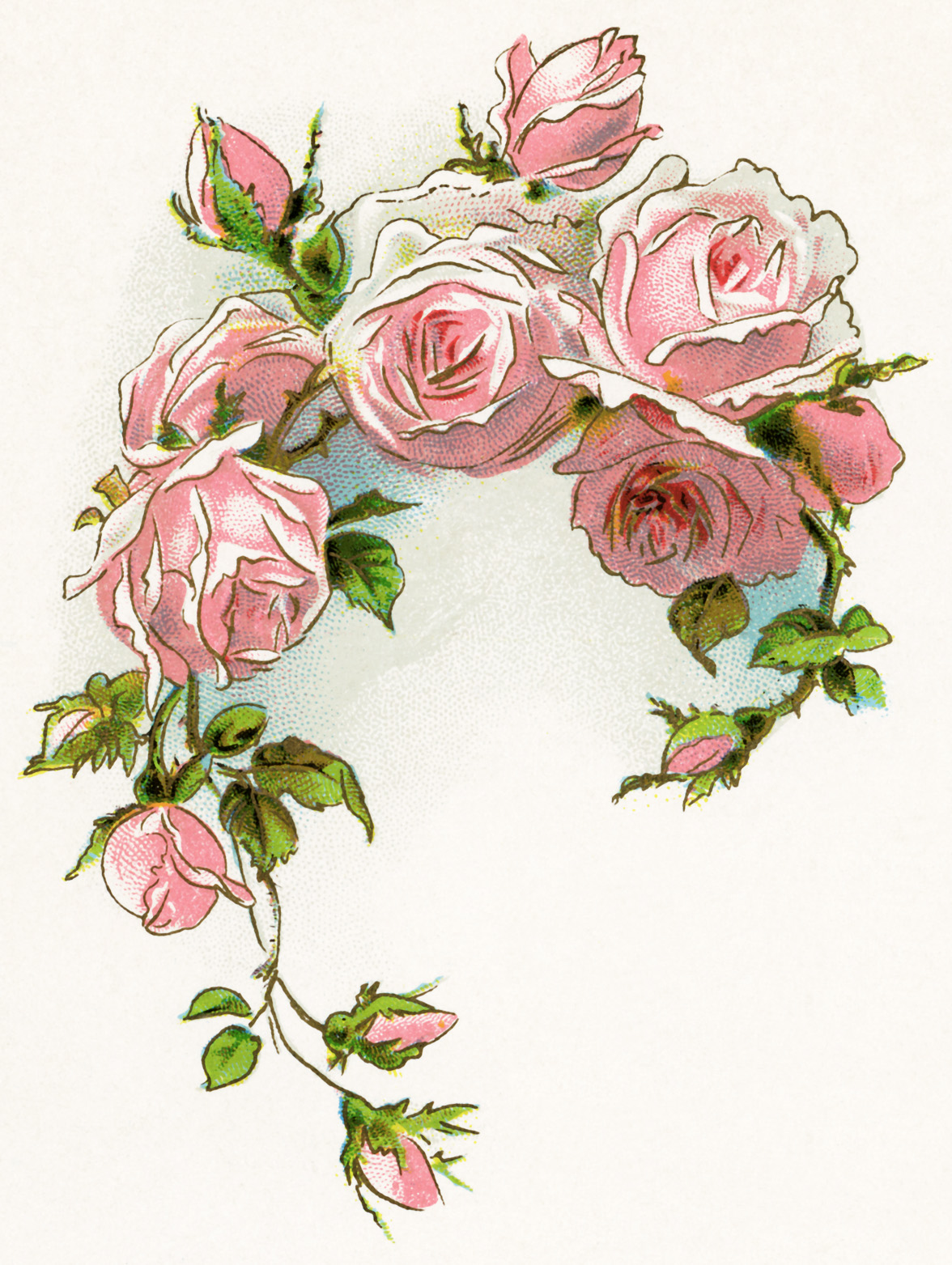 Vintage clip art flowers jpg library download 17 Best images about Antique Roses on Pinterest | Clip art ... jpg library download