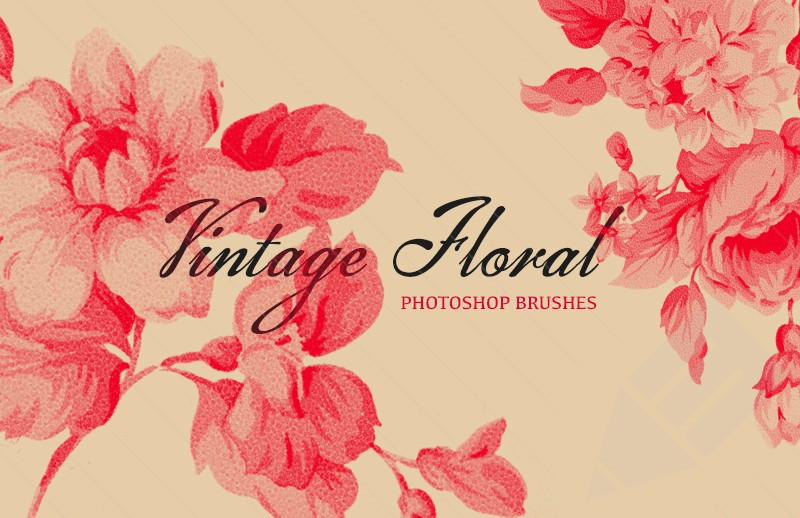 Vintage floral images free vector stock Vintage Floral Photoshop Brush Set - Graffies vector stock