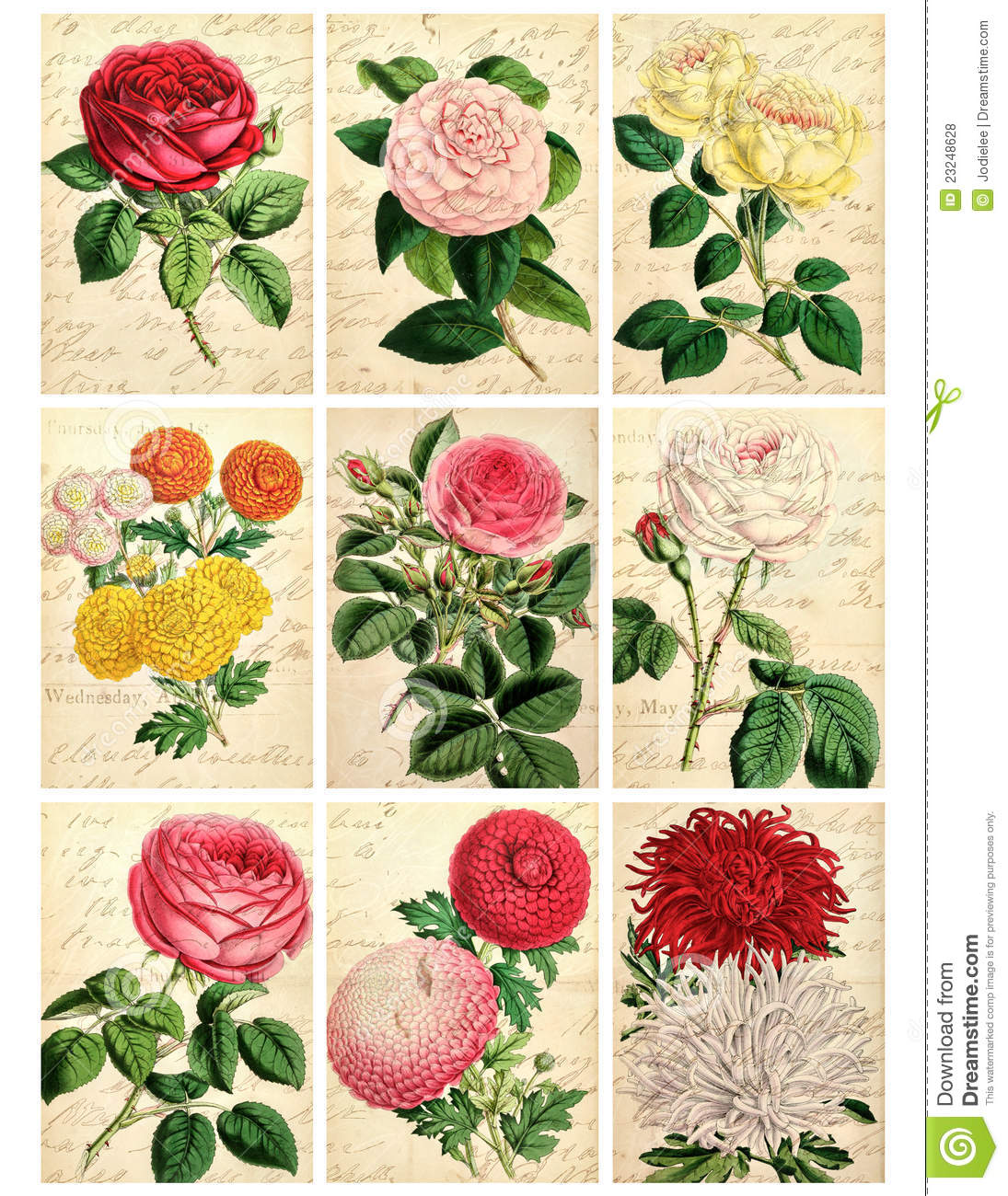 Vintage floral images free graphic freeuse library Set Of Nine Shabby Vintage Floral Cards Royalty Free Stock Photos ... graphic freeuse library