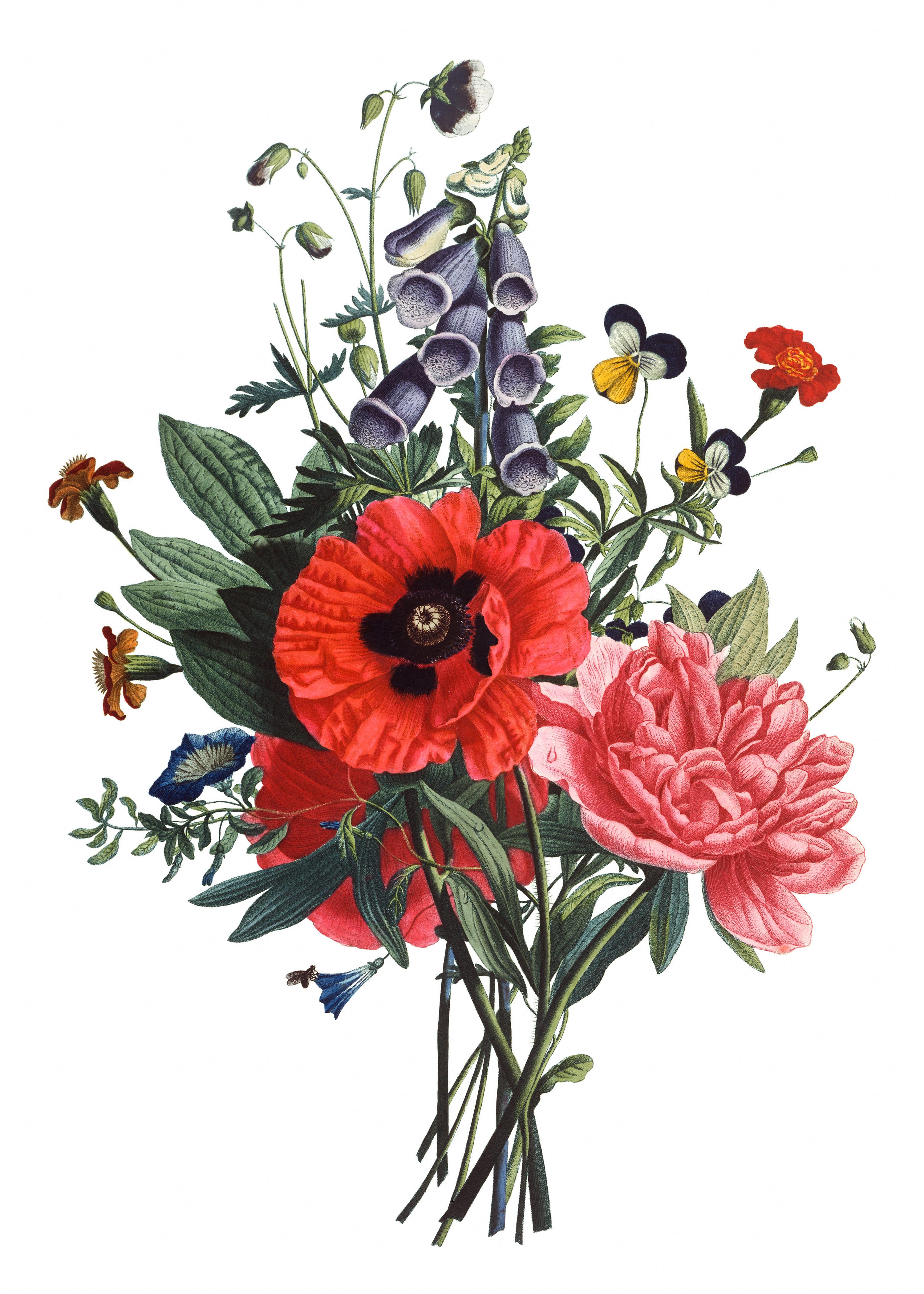 Vintage floral images free clip art library stock 17 Best images about Floral Retro Surrealism Source on Pinterest ... clip art library stock