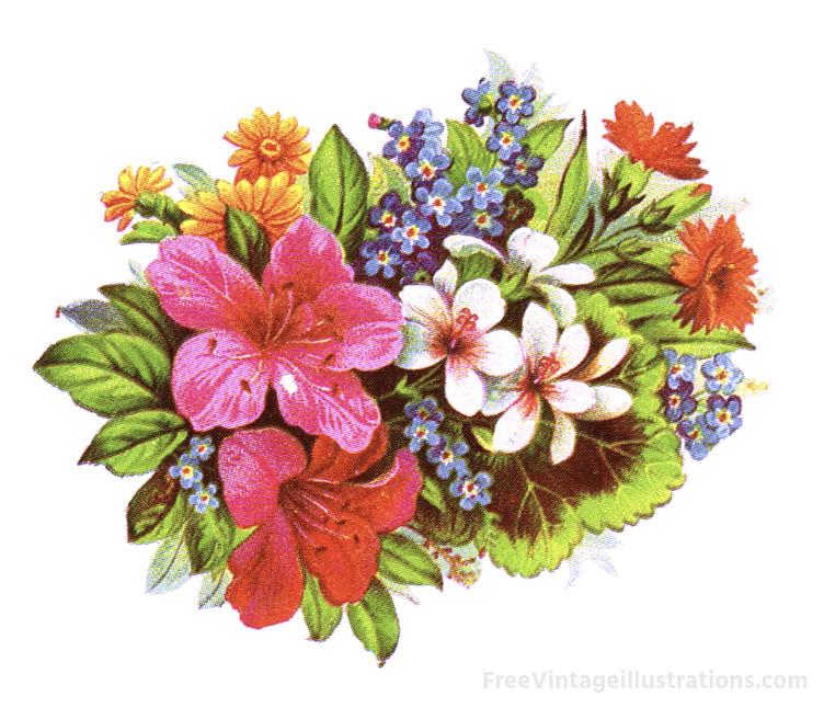 Vintage flower bouquet clipart