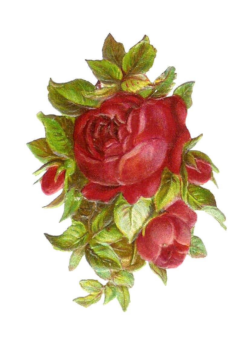Vintage flower clipart png graphic library Vintage Roses Images | Free Download Clip Art | Free Clip Art | on ... graphic library