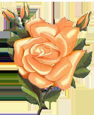 Vintage flower clipart png clip art freeuse download Sweet Vintage Clip Art clip art freeuse download