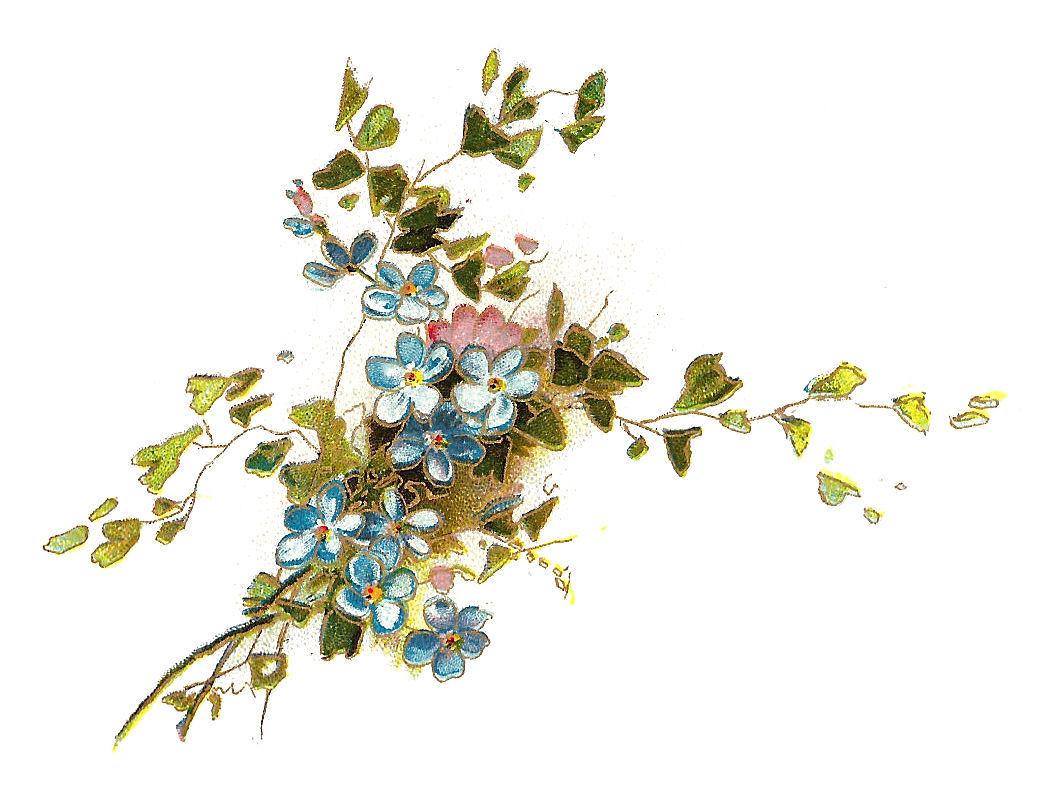 Vintage flower clipart png clip download Vintage Flower Clipart - Clipart Kid clip download