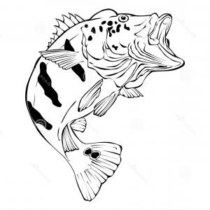 Vintage jumping bass clipart graphic black and white library Vintage Fishing Vector Design Template With Largemouth Bass ... graphic black and white library