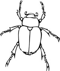Beetle print clipart vector black and white stock Black and white clip art of a insects - Yahoo Search Results ... vector black and white stock